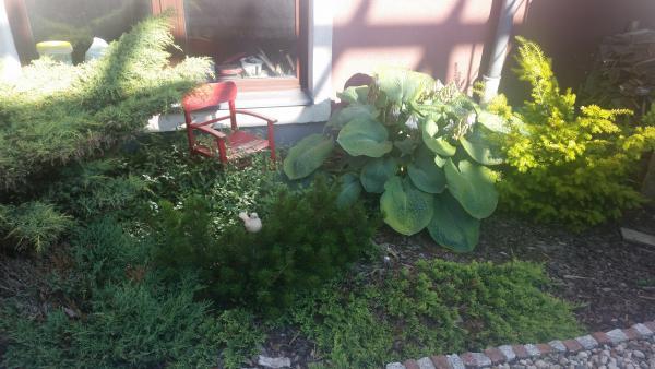 Dziecięce krzesełko też koże zdobić ogród